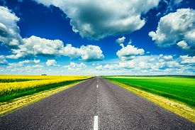 image of track field  - Empty Asphalt Countryside Road Through Fields With Yellow Flowering Canola Rapecolza Canola And Growing Green Wheat In Spring - JPG