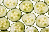 picture of cucumber slice  - back lit fresh organic cucumber slices background - JPG