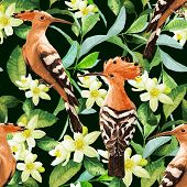 foto of tropical birds  - Seamless pattern with exotic birds - JPG