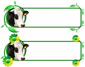 image of cow head  - Two horizontal banners with a head of cow green and yellow flowers with leafs and space for text - JPG