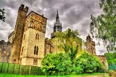 picture of yellow castle  - View of Cardiff Castle  - JPG