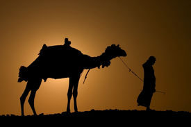 pic of arab man  - a silhoutte of a dromedary and bedouin - JPG