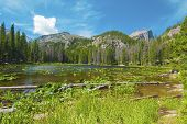 Scenic Nymph Lake In Rocky Mountain National Park. A Small, But Beautiful Lake That Is Accessible Vi poster
