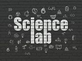Science Concept: Painted White Text Science Lab On Black Brick Wall Background With  Hand Drawn Scie poster