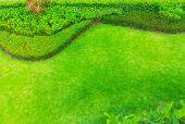 Landscaped Formal Garden Park Design Top View,green Grass With Bush Gardening. poster