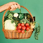 Farmers Harvest Concept. Wicker Basket With Fresh Vegetables. Male Hand Holds Veggies On Green Backg poster