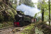 Steam Train Exploring The Green Smoked Woods poster