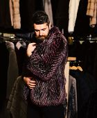 Guy In Purple Furry Coat In Shop With Fur On Background. Winter Clothing Concept. Man With Beard And poster