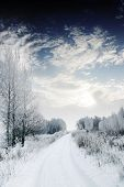 stock photo of winter landscape  - Winter road and forest - JPG