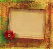 stock photo of san valentine  - Grunge Frame For Congratulation With Flower  - JPG