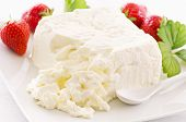 stock photo of curd  - fresh curd - JPG
