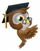 stock photo of peek  - Illustration of a happy cute wise old owl leaning or peeking round a sign and pointing at it - JPG
