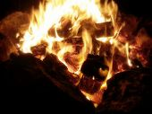 stock photo of torchlight  - Extreme Close-Up on trees burned in the fire. Black background. - JPG