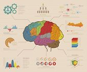 Infographic Elements , Brain concept