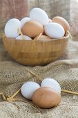 stock photo of hen house  - A bowl with free range eggs in the hen house - JPG