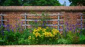 pic of slave-house  - Flowers along the wall of George Washington - JPG
