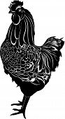 pic of black-cock  - Cock bird vector animal farm  agriculture silhouette - JPG