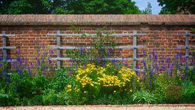 stock photo of slave-house  - Flowers along the wall of George Washington - JPG