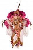 picture of school carnival  - Beautiful carnival dancer - JPG