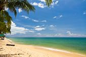 picture of dong  - Sand beach with canoes in Phu Quoc close to Duong Dong in Vietnam - JPG