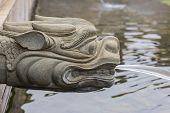 pic of dragon-fish  - Dragon statue water spray - JPG