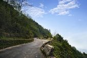 foto of darjeeling  - Road passing through a mountain - JPG
