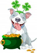 stock photo of pit-bull  - Illustration of cute Pit bull celebrates Saint Patrick Day - JPG