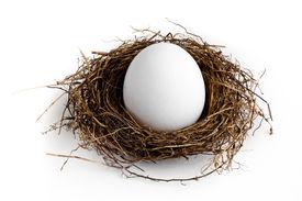 image of nest-egg  - A nest egg on a white background - JPG
