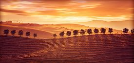 picture of sunny season  - Beautiful countryside landscape - JPG