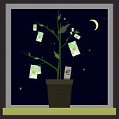 picture of bine  - Growing euro sign like plant with leaves and dollar sign like root - JPG