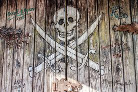 picture of skull cross bones  - Background Texture  - JPG