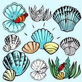 A set of 5 vector illustrations of clams and mussels in color, and black and white renderings.