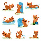 Naughty Kitten In Different Situations, Mischievous Cute Little Cat Vector Illustrations On A White  poster