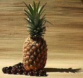 foto of kukui nut  - a fresh pineapple with a  - JPG