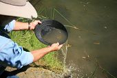 stock photo of gold panning  - gold panning - JPG