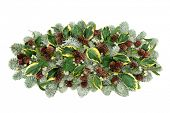 Natural winter flora decoration with snow covered pine, ivy leaf sprigs, mistletoe and pine cones is poster