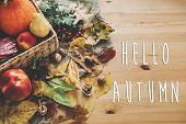 Hello Autumn Text. Hello Fall Sign On  Pumpkin And Vegetables In Basket And Colorful Leaves With Aco poster