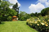 picture of gazebo  - Beautiful garden with blooming roses and a small gazebo - JPG