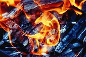 Burning Wood In A Brazier. Fire, Flames. Grill Or Barbecue poster