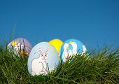 stock photo of duck egg blue  - Easter bunny hand painted on an egg shell - JPG