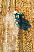 Shooting From Above, Combine Harvester Works On A Wheat Field. Autumn Harvesting Of Cereals. poster