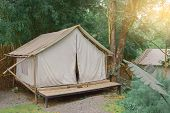 Close Up Tent Camping In Jungle Of Nature.metaphor For Backpack Adventure Travel Outdoor, Wild, Back poster