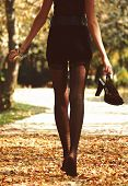 The Girl In Stockings. Autumn. Legs Of A Girl Walking On Yellow Foliage On Socks poster