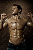 stock photo of felons  - the very muscular handsome felon guy misery out of netting steel fence with barbed wire - JPG