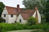 picture of willy  - Willy lotts Cottage and Reeds in suffolk - JPG