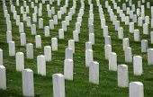 stock photo of arlington cemetery  - tombstones in the arlington cemetery in washington DC - JPG