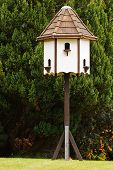 stock photo of pigeon loft  - New dovecote a popular piece of garden furniture in rural areas - JPG