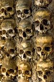 picture of catacombs  - Wall full of skulls and bones in the bone chapel in Evora - JPG