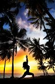 stock photo of virabhadrasana  - Woman silhouette doing virabhadrasana I warrior pose on the beach near palm trees at sunset background in India - JPG