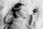 image of scepter  - Portrait of a newborn baby boy with a crown ( black and white ) ** Note: Soft Focus at 100%, best at smaller sizes - JPG